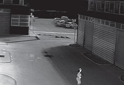 Termokamera FLIR PT-602CZ na nočné videnie - 3