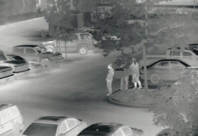 Termokamera FLIR PT-602CZ na nočné videnie - 4